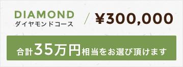 ダイヤモンドコース300,000円